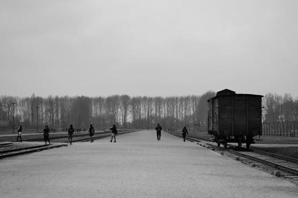 Birkenau oggi di mmf's