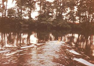 Photo: 1983: Flüchtendes Reh auf dem Toten Emsarm hinter Meppen