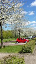 Photo: Puur Natuur in Utrecht