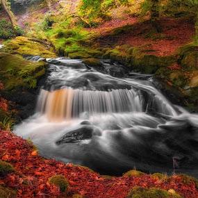 by Paul Holmes - Uncategorized All Uncategorized ( faerieland. co wicklow. ireland. nikon d700.waterscape )
