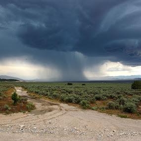 by Kristi Parker - Landscapes Weather