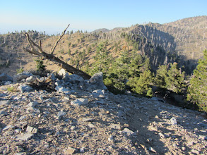 Photo: 6:13 - Middle Hawkins (8505'). View north