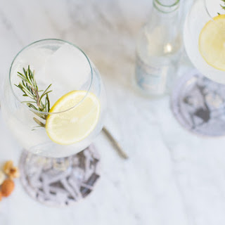 Spanish Citrus Gin and Tonic Cocktail.