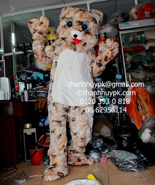mascot con mèo cho thuê