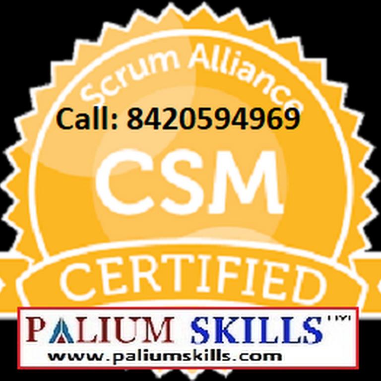 Pmp Capm Agile Scrum Prince2 Six Sigma Togaf Training
