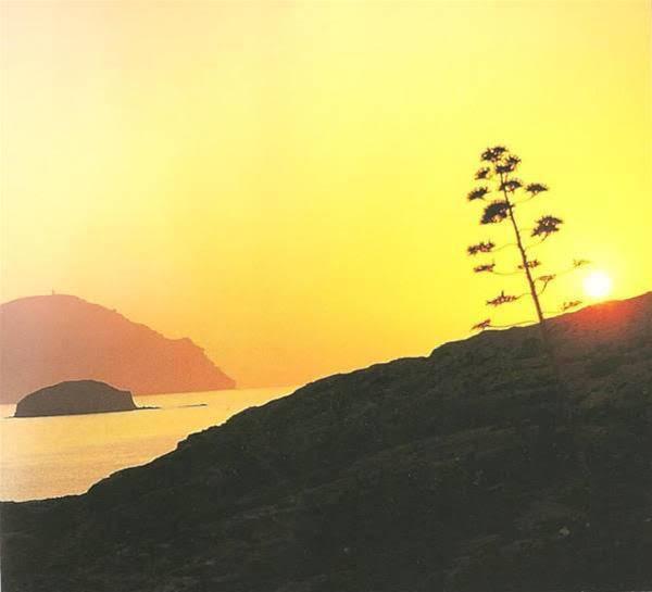 Camping Cabo de Gata