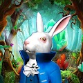 Alice: Fantasy world in the Wonderland! APK