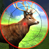 Animal Hunting Deer Sniper Hunt Safari
