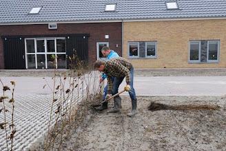 Photo: boer Ronald en zwager Bennie planten vlak voor de opening nog wat Elzen