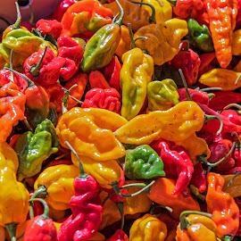 Peppers Galore by Will McNamee - Food & Drink Fruits & Vegetables (  )