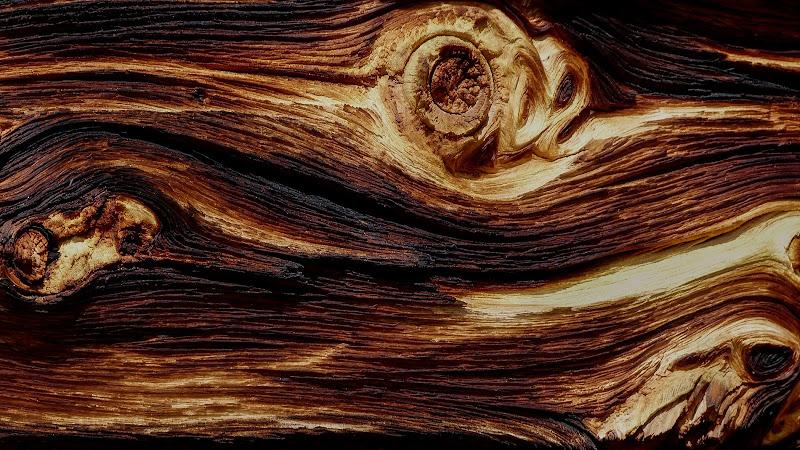 Wood shades di Nefti-Monica