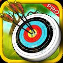 Arrow Master Archer Score 2016 icon