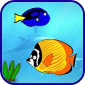 Cute Fish Games Free