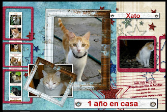 Photo: Xato-2008