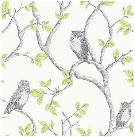 Fine Decor Woodland Owls Tapet