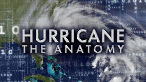 Hurricane the Anatomy thumbnail