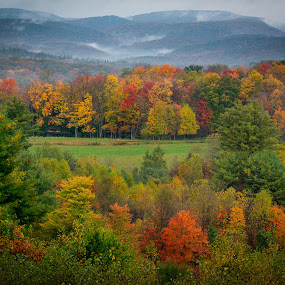 Winslow Hill by Cindy Hartman - Landscapes Mountains & Hills ( autumn, fall )