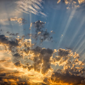 Rays from Heaven by Leigh Brooksbank - Landscapes Sunsets & Sunrises ( light rays, god rays, sunset, cloud, scenery, sun rays )