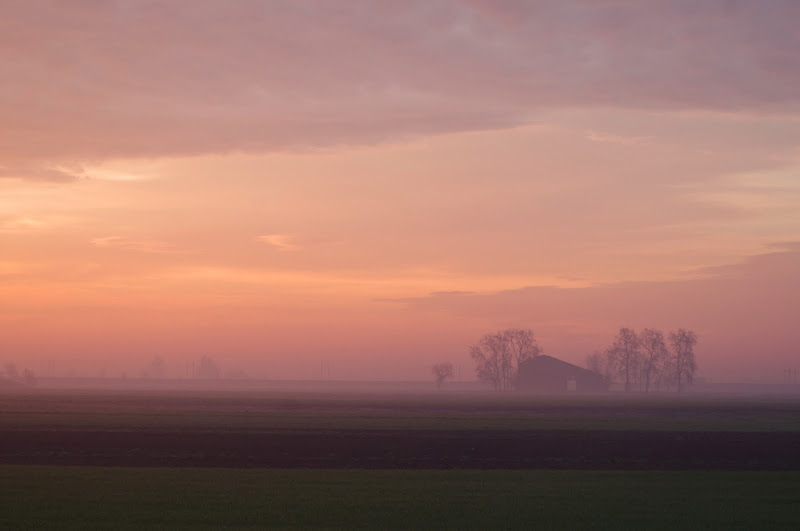 L'alba di un nuovo giorno di honesty3883