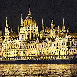 Hungarian Parliament by Richard Michael Lingo - Buildings & Architecture Public & Historical ( public, buildings, parliament, architecture, hungary,  )