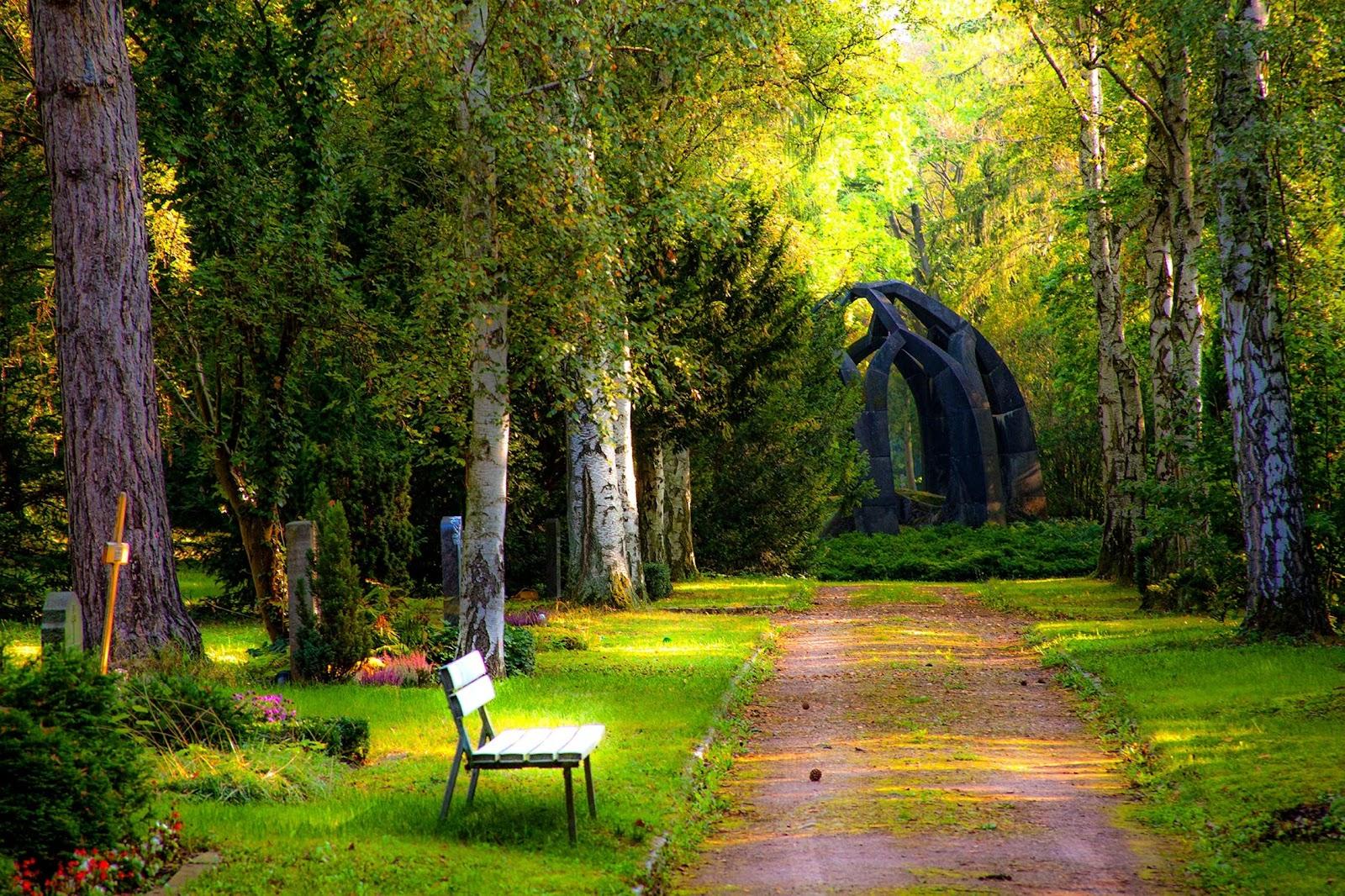 a gorgeous park