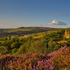 Roseberry Topping by Steve BB - Landscapes Prairies, Meadows & Fields (  )