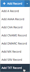 The Add TXT Record option is selected on the Add Record drop-down list.