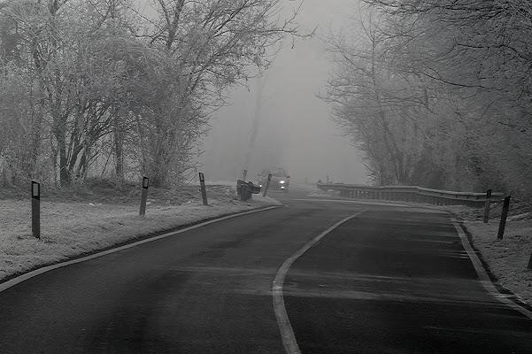 Strada ghiacciata di acquario