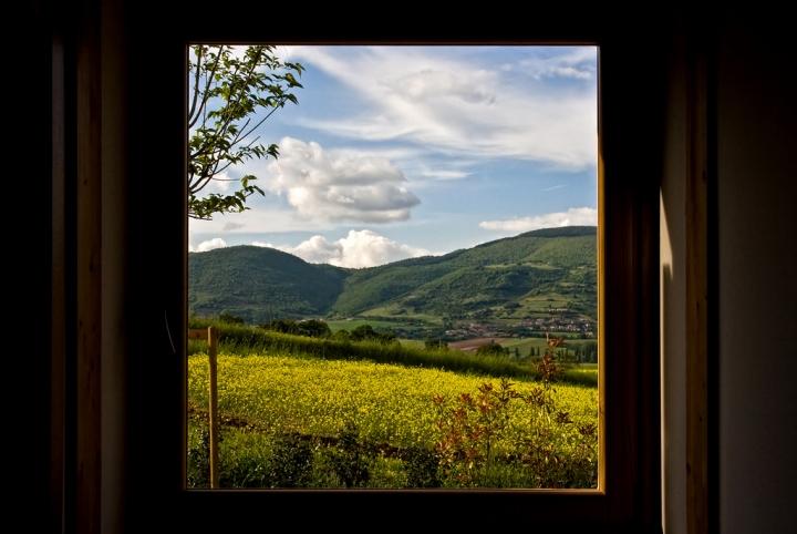 Una finestra sulla natura di babi83