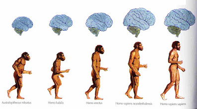Photo: Neocortex is our newest brain area. It is the outer part of the brain. Great minds are needed to live in groups, cooperate and thereby also do all the things that cooperation requires. Among other things, cheat detection, and to notice fairness and unfairness in the group.  Homo sapiens are only 200.000 years old - even though a transition from Homo erectus to Homo sapiens took place during thousand of years. Our brain was so useful in our social life that a bigger brain was selected for. And in an instant we got a brain so big that we had to give birth before the brain was too big and this is before we are developed enough to handle ourselves in the world by ourselves. Meaning that we require parenting from the family and group as a whole.   Homo Sapiens basics in a awesome Norwegian documentary:  http://en.wikipedia.org/wiki/Hjernevask