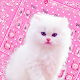 Cute Pink Kitty Keyboard Theme Download on Windows