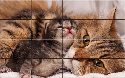 Tile Puzzle Cats apkpoly screenshots 5