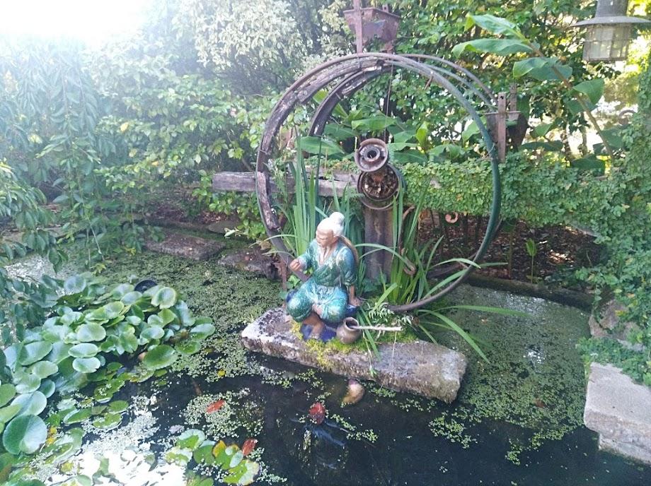 Foto Jardín botánico Fundación Sales 18