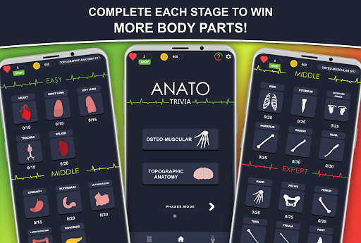 Anato Trivia -  Quiz on Human Anatomy screenshots 3