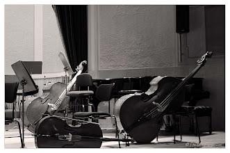 Photo: In der Philharmonie