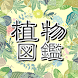 植物 写真 名前 調べる〜花の名前 写真 調べる無料×観葉植物×育成×育てる×さぼてん〜