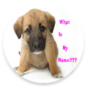 Cute Girl Dog Names App 2017 icon