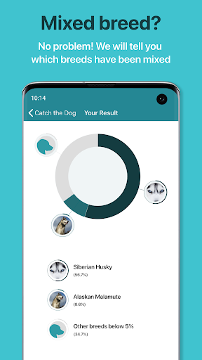 Dog Scanner – Dog Breed Identification screenshot 1
