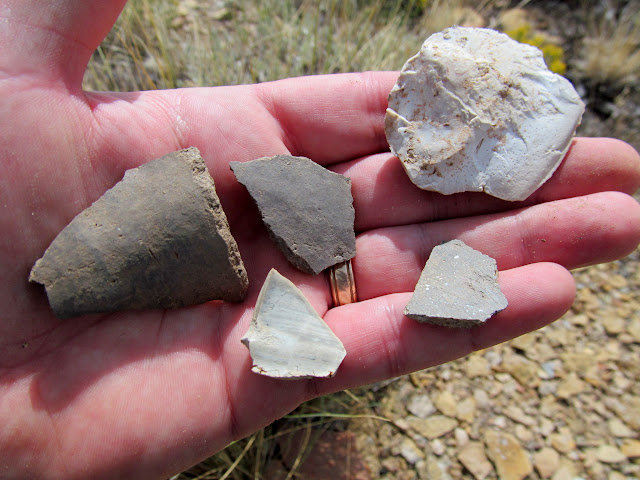 Potsherds and lithics