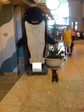 Photo: Little dog posing for a photo with Orca at the Seattle airport