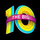 Electric Zoo: The Big 10 icon