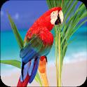 Colorful Animals Wallpaper icon