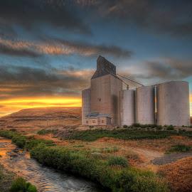 Riverside Silo by Eric Demattos - Buildings & Architecture Other Exteriors ( eric demattos, sunset, farm, wheat, river, silo )