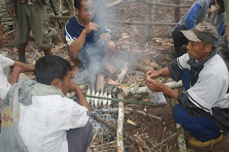 Photo: Cooking in the forest camp-2 Days Green Trail Trek-Trekking in Luang Namtha, Laos