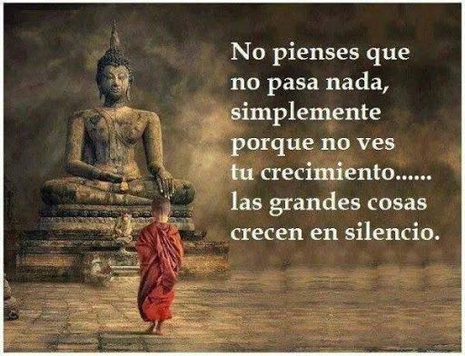 Frases Buda Imagenes