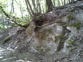 Photo: Lívjákné Ildikó fotója