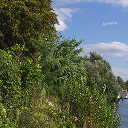 Immobilier : La commune de Charenton-le-Pont est de plus en plus attractive !