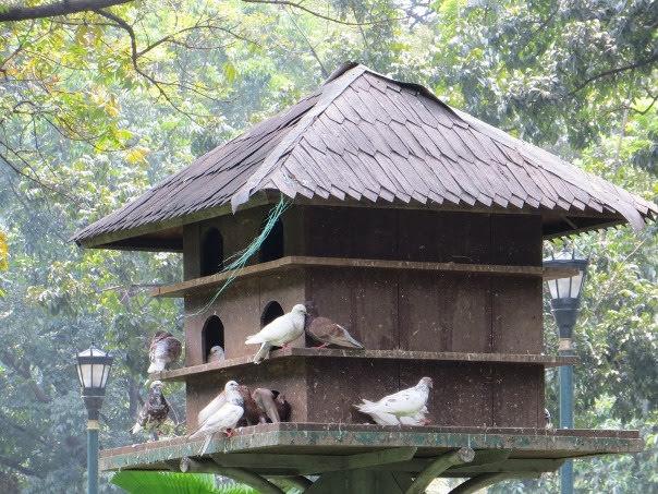 Taman Suropati