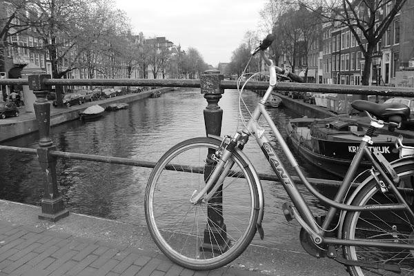 Streets of Amsterdam di darioformica