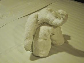 Photo: Towel elephant